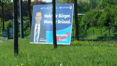 AfD en campaña electoral en Alemania.