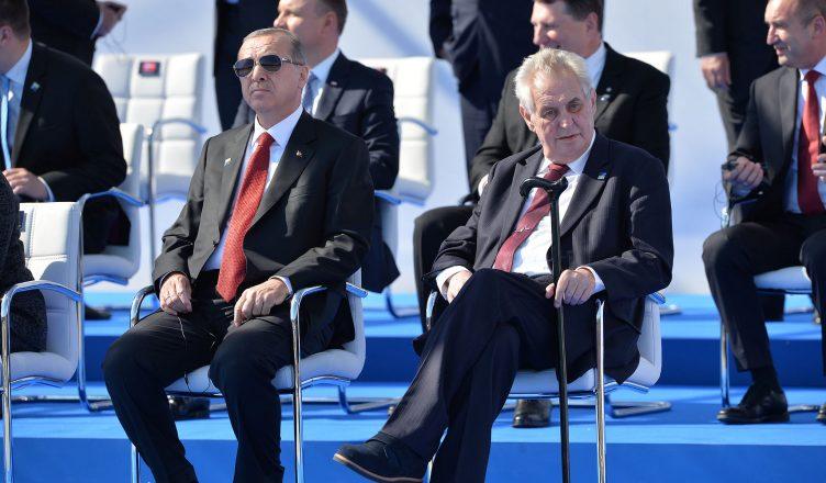 Recep Tayyip Erdogan (President, Turkey) and Milos Zeman (President, Czech Republic)